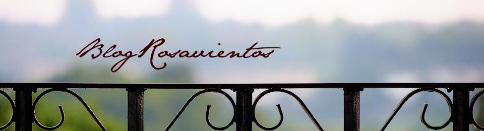 Blog Rosavientos